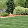 Want Professional Lawn Spraying For Your Idaho Yard?
